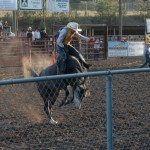 The first cowboy on the bucking stallion!