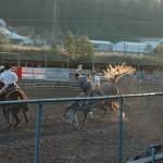 Cowboy loses his hat!