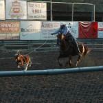Cowboys get one shot to lasso the calf.